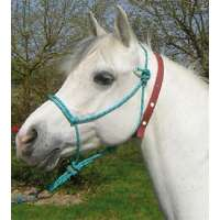 COLLIER ANTI-INSECTES CHEVAUX